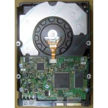 HDD Sun 500G 500Gb в Норильске, FRU 540-7889-01 в Норильске, BASE 390-0383-04 в Норильске, AssyID 0069FMT-1010 в Норильске, HUA7250SBSUN500G (Норильск)