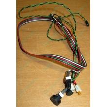 Светодиоды в Норильске, кнопки и динамик (с кабелями и разъемами) для корпуса Chieftec (Норильск)