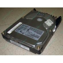Жесткий диск 18.4Gb Quantum Atlas 10K III U160 SCSI (Норильск)